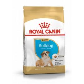 French Bulldog 30 Junior (Французский Бульдог Юниор 30)
