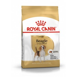 Royal Canin Beagle (Бигль)