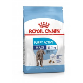 Royal Canin Maxi Junior Active (Макси Юниор Эктив)