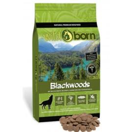 Wildborn Blackwoods - беззерновые корма для собак со свежим мясом дикого кабана, кролика и сладким картофелем