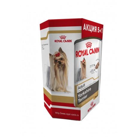 ROYAL CANIN YORKSHIRE TERRIER - влажный корм (паштет) для собак породы йоркширский терьер (упаковка 12 штук по 85г)