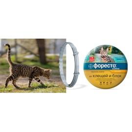 Форесто (Foresto) антипаразитарный ошейник для кошек и собак мелких пород (≤ 8 кг, 38 см)