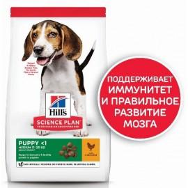 Hills Puppy Medium (со вкусом курицы)