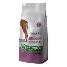 NP SP dog Junior Maxi - корм для молодых собак крупных пород