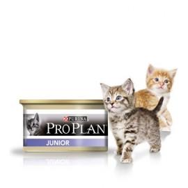Консервы Pro Plan Kitten - для котят с курицей (упаковка 24 штуки по 85 г)
