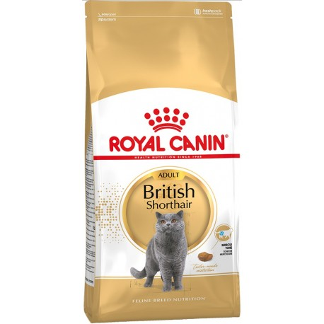 Royal Canin British Shorthair (Британская короткошерстная)