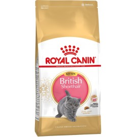 Royal Canin Kitten British Shorthair (Киттен бритиш)