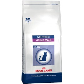Royal Canin Young Male (Кэт Янг Мэйл)