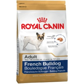 French Bulldog 26 Adult (Французский Бульдог 26)